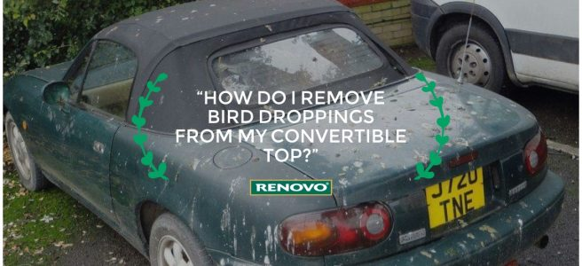 How do I remove bird droppings from my convertible top